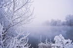winter_fog_200960